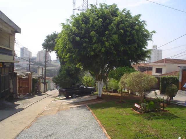 Ipiranga 031